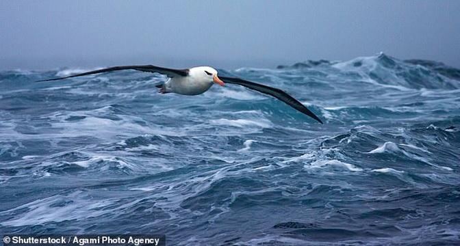 Чому National Geographic оголосили про п'ятий океані на Землі