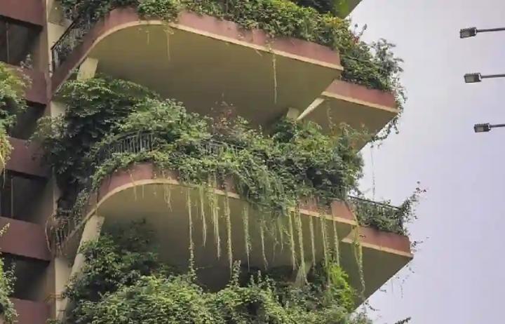 Знаменитий китайський «вертикальний ліс» перетворився на місто-привид. Там живуть 10 сімей (фото, відео)